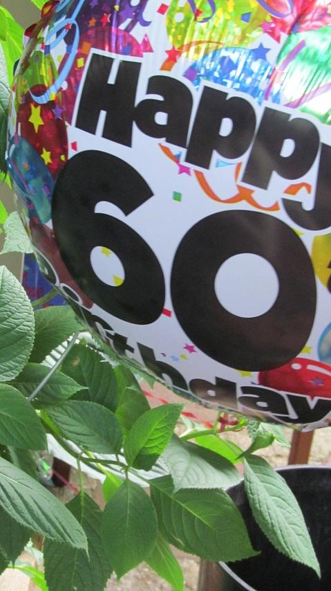 60th Birthday Bash 037